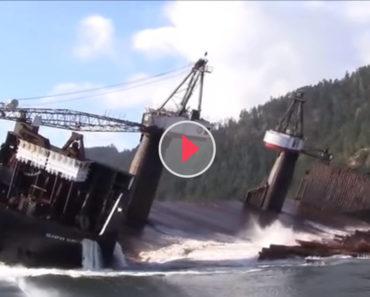 log barge
