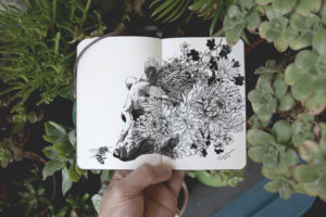 Nature In Drawings