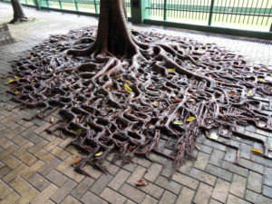 Badass Trees